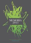 Proyecto Hombre Gipuzkoa: Memoria 2013